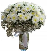 Vazoda beyaz papatyalar  Ulus Ankara ucuz çiçek gönder