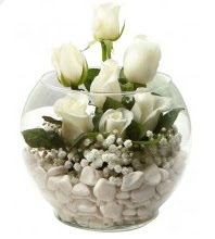 11 adet beyaz gül cam fanus çiçeği  Ulus Ankara çiçekçi telefonları