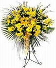 Ulus Ankara ucuz çiçek gönder  Sari kazablanka Ferforje