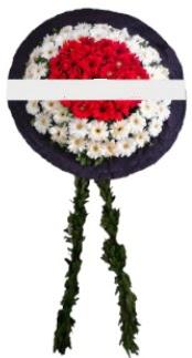 mozele çiçeği  Ulus Ankara çiçek gönderme sitemiz güvenlidir