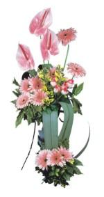 Ulus Ankara çiçek , çiçekçi , çiçekçilik  Pembe Antoryum Harikalar Rüyasi