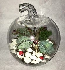 Küçük terrarium elma 3 kaktüs  Ulus Ankara çiçekçi telefonları