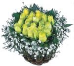 Ulus Ankara hediye sevgilime hediye çiçek  Sari harika bir gül sepeti