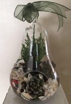 Orta boy armut terrarium 3 kaktüs  Ulus Ankara çiçek , çiçekçi , çiçekçilik