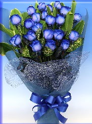 19 adet eşsiz mavi gül buketi  Ulus Ankara online çiçekçi , çiçek siparişi