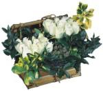 Ulus Ankara kaliteli taze ve ucuz çiçekler  Ahsap sandik beyaz güller
