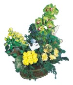 Ulus Ankara çiçek mağazası , çiçekçi adresleri  Dal orkide, sari gül ve gerberalar