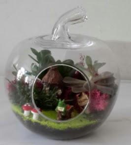 Elma cam orta boy terrarium teraryum