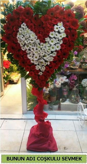 Coşkulu bir aşk çiçeği