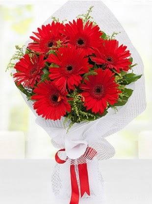 Kırmızı Gelbera Buketi  Ulus Ankara çiçek servisi , çiçekçi adresleri