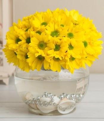 Fanusta Sarı Papatya  Ulus Ankara anneler günü çiçek yolla