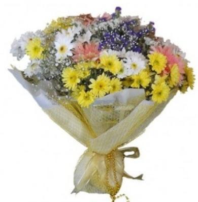 Karışık mevsim çiçeği