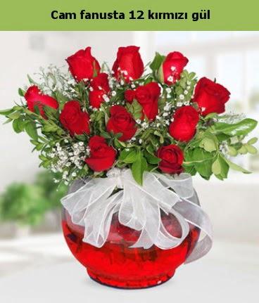Cam içerisinde 12 adet kırmızı gül  Ulus Ankara hediye sevgilime hediye çiçek