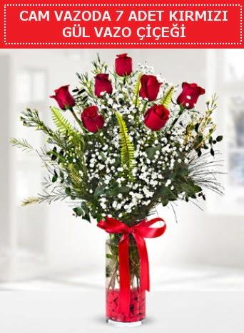 Cam vazoda 7 adet kırmızı gül çiçeği