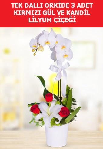 Tek dallı orkide 3 gül ve kandil lilyum