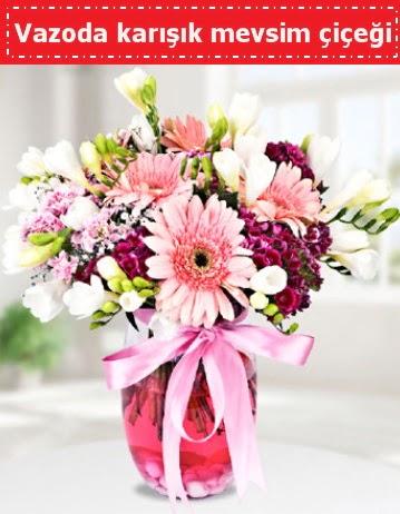 Vazoda karışık mevsim çiçeği
