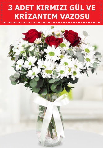 3 kırmızı gül ve camda krizantem çiçekleri