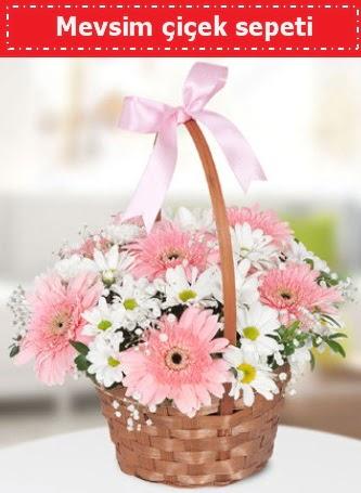 Mevsim kır çiçek sepeti