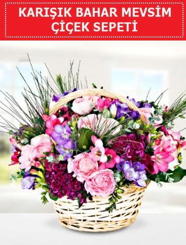 Karışık mevsim bahar çiçekleri
