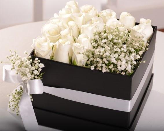 Kutu içerisinde 19 beyaz gül ve cipsofilya