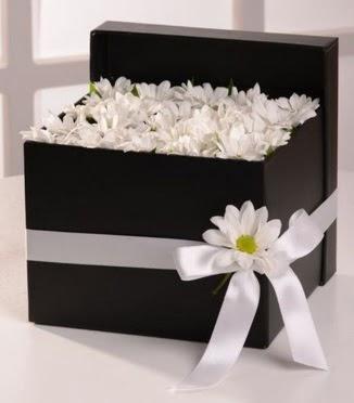 Kutuda beyaz krizantem papatya çiçekleri  Ulus Ankara anneler günü çiçek yolla