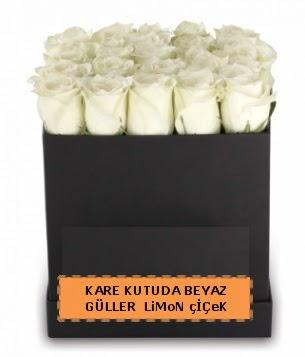 Kare kutuda 17 adet beyaz gül tanzimi  Ulus Ankara anneler günü çiçek yolla