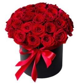 25 adet kırmızı gül kız isteme çiçeği  Ulus Ankara hediye sevgilime hediye çiçek