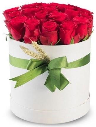 25 adet özel kutuda kırmızı gül  Ulus Ankara yurtiçi ve yurtdışı çiçek siparişi  söz çiçekler