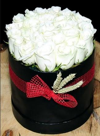 Özel kutuda 27 adet beyaz gül  Ulus Ankara yurtiçi ve yurtdışı çiçek siparişi