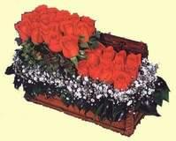 Sandikta 13 adet güller