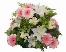 Ulus Ankara çiçek satışı  Gül kazablanka gerbera sepet çiçek modeli