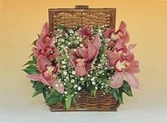 Ulus Ankara yurtiçi ve yurtdışı çiçek siparişi  Sepet içerisinde orkide